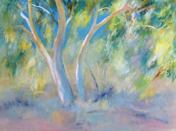 11. Sunlit Gums, near Alice Springs - 91 x 122 cm