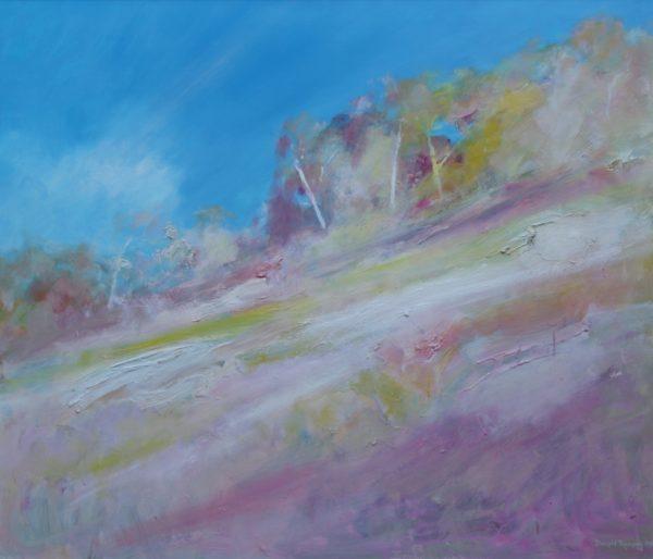 28. Hillside, Near Numeralla, NSW - 91 x 107 cm