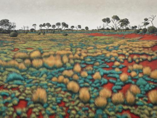 Coondambo landscape I