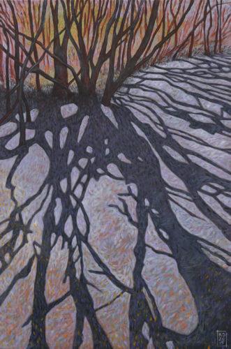 Melaleuca shadows