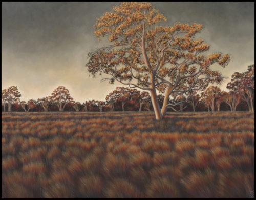 Mparntwe landscape II (evening light)